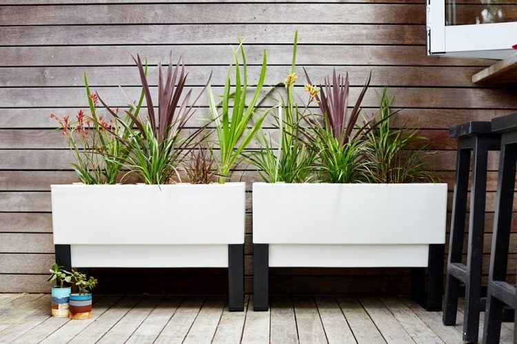 Modern Planter Boxes: The Sophisticated Solution for Stylish Gardeners