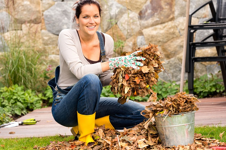 Autumn and Gardening Go Well Together: Garden Work Doesn't End when Summer Does