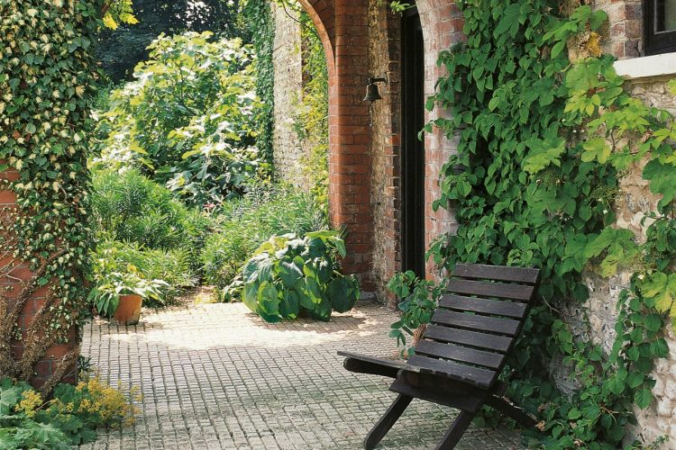 Step Up Your Garden's Design with Climbing Plants