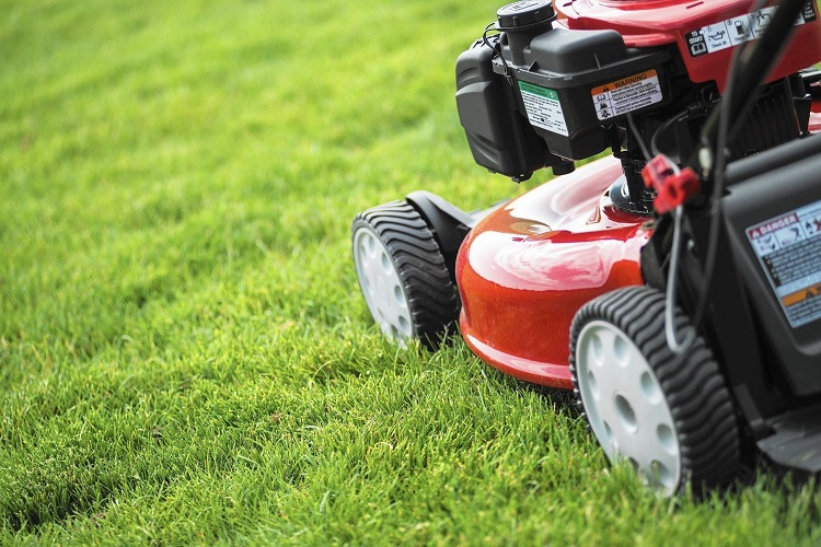 Lawnmower Can Help You Maintain a Good-Looking Lawn (With Less Time and Effort)
