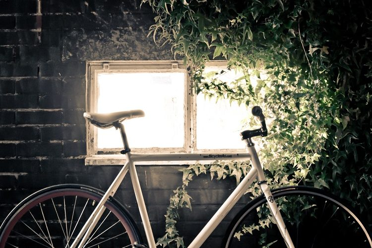 Biking Equals Healthy Life: The Story on Bike Pedals