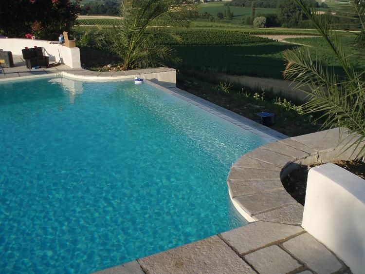 swimming pool skimmer lid 2