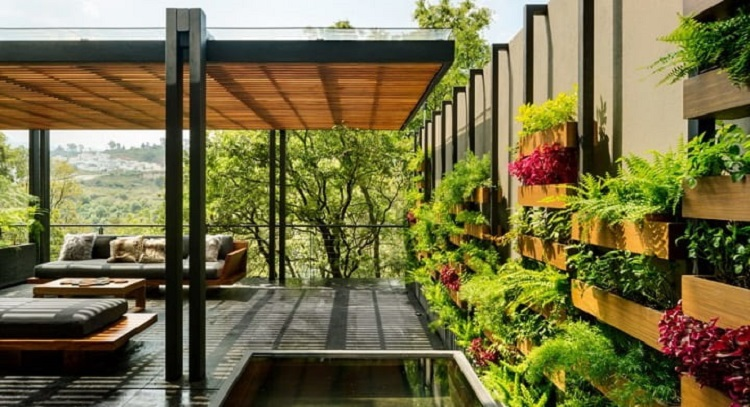Wall Planters: Tips for Creating a Thriving Vertical Garden