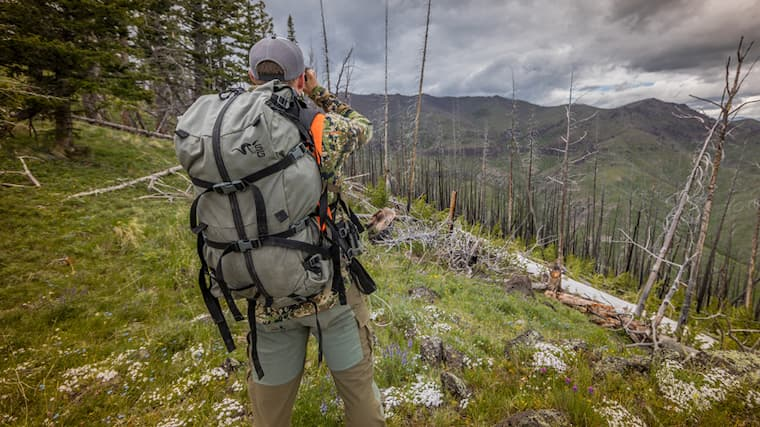 Choose a lighter backpack as a heavy backpack may slow you down. Most of the top end backpacks share several similar qualities, including a fairly lightweight design. If you are planning to use your backpack for day hunts only, you can go with a small backpack. But if you know you'll use your backpack for day hunts as well as overnight hunts, then it's always a better idea to choose a big pack.